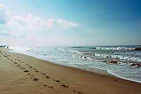 Beach699435_960_720_2